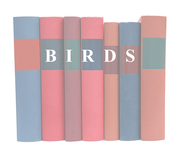 Books on Birds and birding