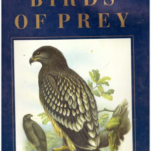 CLASSIC NATURAL HISTORY PRINTS - BIRDS OF PREY