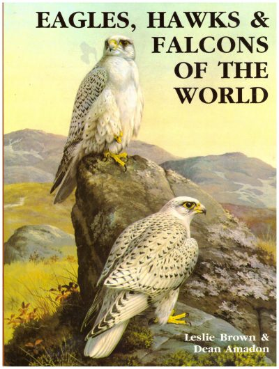 EAGLES, HAWKS and FALCONS OF THE WORLD