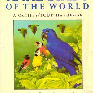 RARE BIRDS OF THE WORLD