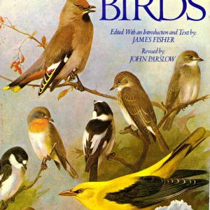 THORBURN'S BIRDS