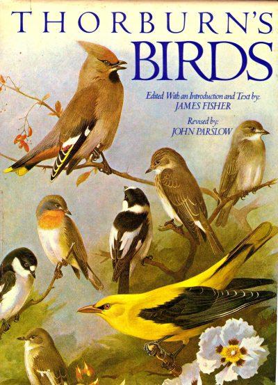THORBURN'S BIRDS