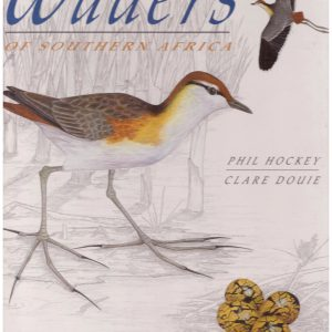 WADERS OF SOUTHERN AFRICA
