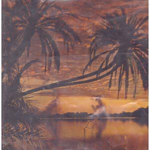 Zambezi south, an explorer's view of Africa