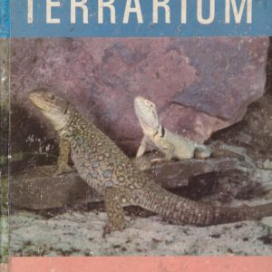Starting a Terrarium